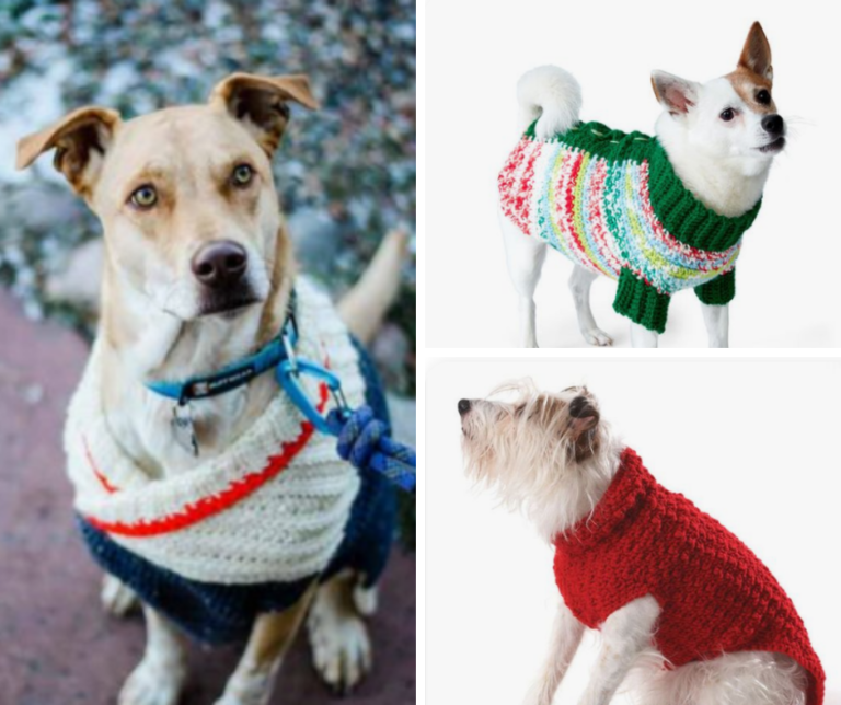 crochet dog sweater compilation of free patterns