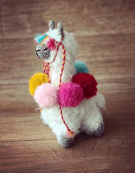 Hola the alpaca1