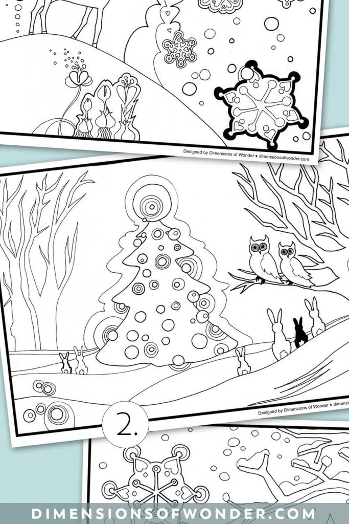 Winter-Coloring-Pages-Fir-Img1
