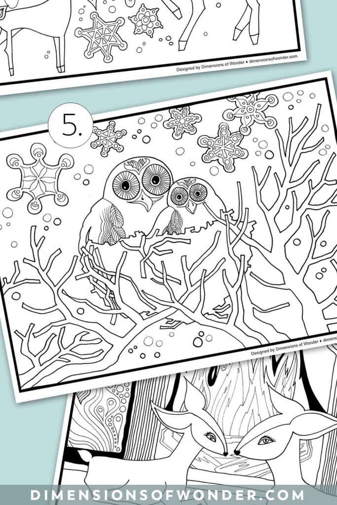Winter-Coloring-Pages-Owls-Img1